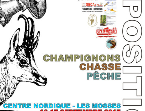 Exposition Champignons Chasse Pêche